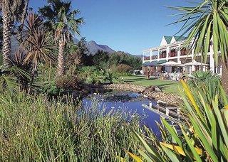 Protea King George - Südafrika: Western Cape (Kapstadt)