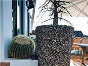 El Hotelito del Golfo - Lanzarote