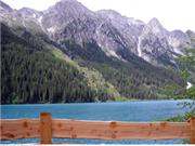 Friedemann - Trentino & Südtirol