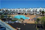 Lanzarote Palm - Lanzarote