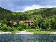 Wellness Hotel Auerhahn - Hochschwarzwald
