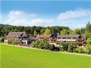 mD Grüner Wald - Schwarzwald