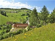 Vitalhotel Grüner Baum Todtnau - Schwarzwald