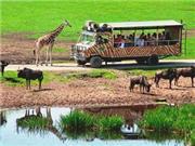 Serengeti Safari Lodges - Lüneburger Heide