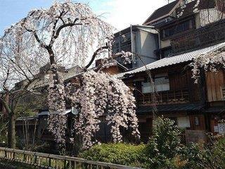 Hotel Live Max Kyoto Ekimae - Japan - Japan: Tokio, Osaka, Hiroshima, Japan. Inseln