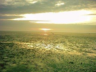 KNAUS Campingpark Tossens - Nordseeküste und Inseln - sonstige Angebote