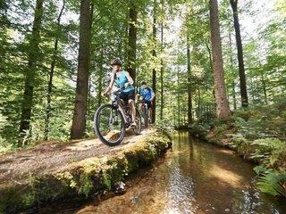 Ferienhotel Hubertus - Bayerischer Wald