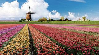 City Hotel Nieuw Minerva - Niederlande - Niederlande