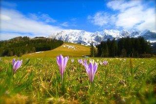 Hotel Schwaiger - Österreich - Steiermark