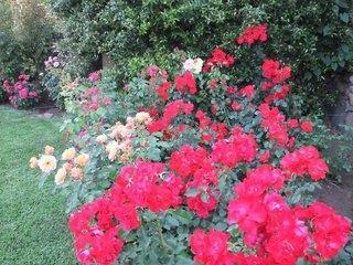 Hotel Feudogrande - Fiumefreddo - Italien